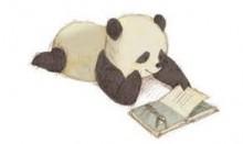 panda, book reading